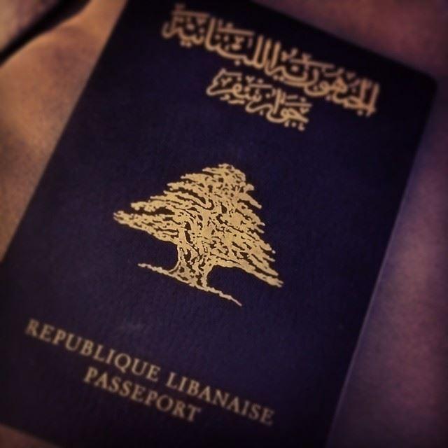 lebanese passport lebanon beirut cedar tree our ...