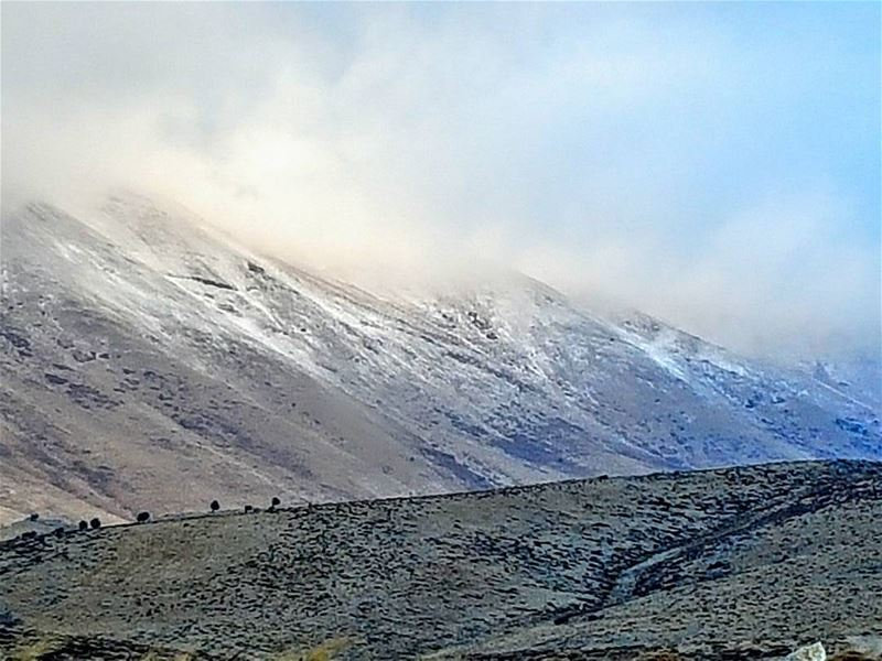 أول ثلج يتساقط على أعلى قمم جبال لبنان 2-11-2016 القرنة_السوداء ... (القرنة السوداء)
