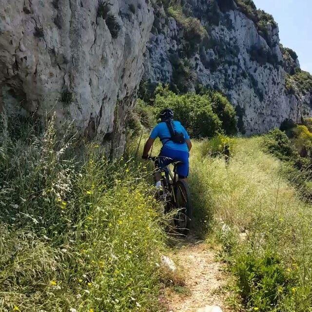 bike bikes biker bikelife biking day wilier wilierbikes ... (Hamet)