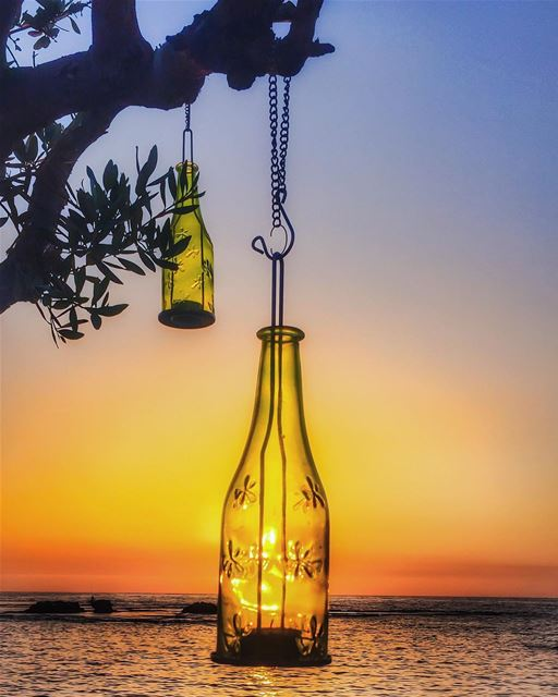 An olive branch holding sunset in a bottle 🌿🌅🌿 like a candle 🙏 like a... (Byblos, Lebanon)