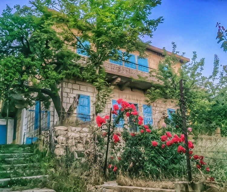 June is like a hopeful window to the dreamy blue summer skies 🌺💙🌺... (Ehden, Lebanon)