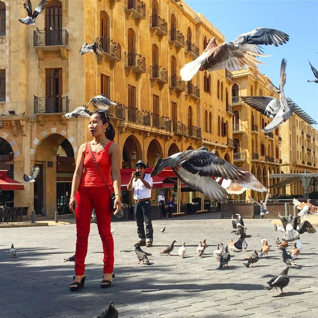 Sunday morning ladyinred birds birdsofinstagram new sunny day ... (Beirut, Lebanon)