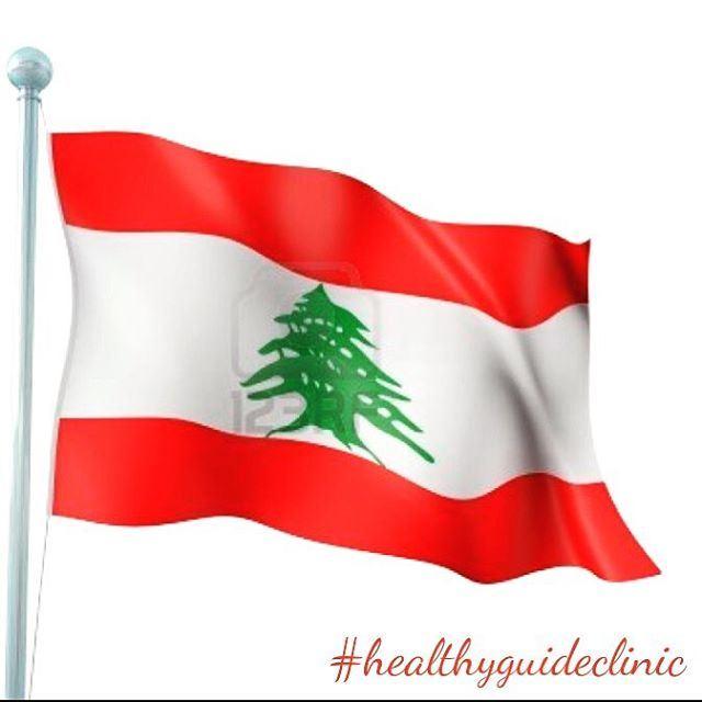 Happy Independence Day 🇱🇧 livelovelebanon independenceday army ...
