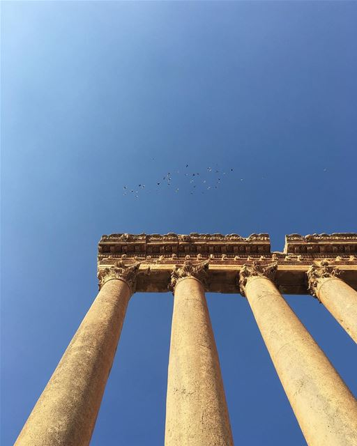 New day, new city. We found back @drowster in Baalbek and we visited the... (Baalbek Temple)