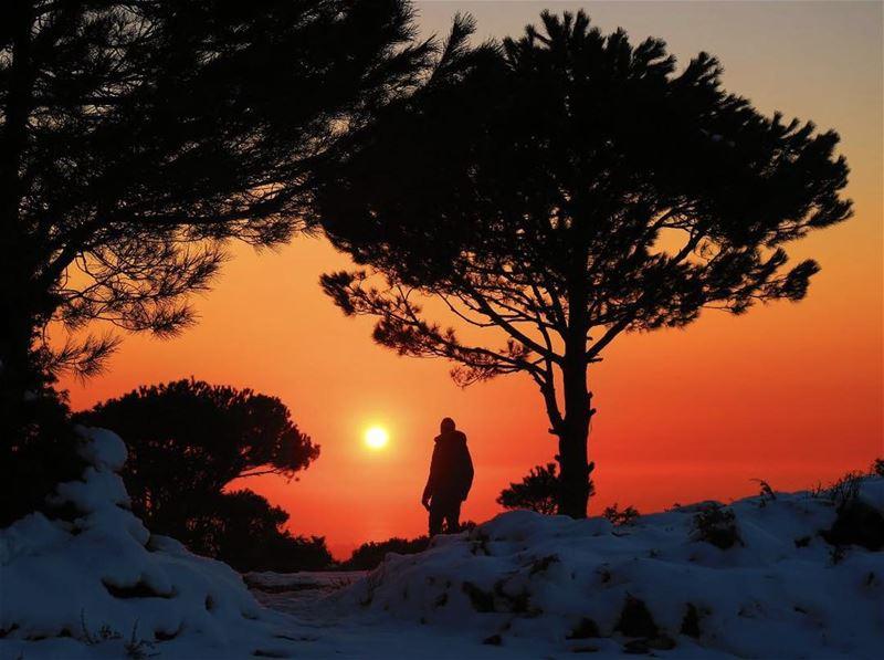 C'est la nature qui m'as appris L'esprit de vivre en Liberte -Tadao Ando- � (Baskinta, Lebanon)