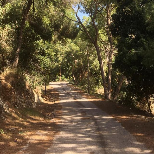 ig_capture capture lebanon nature naturegram natureshots ...