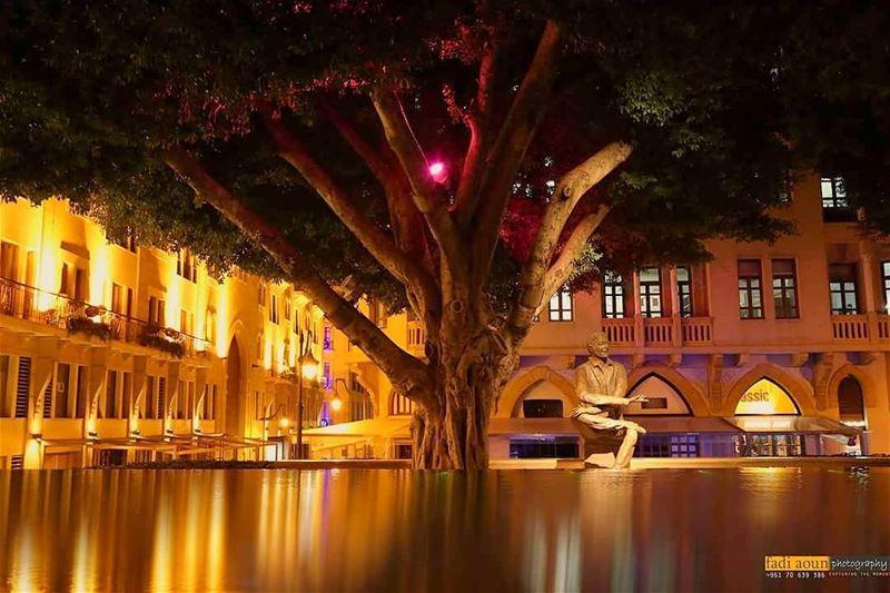 photo fadiaounphotography beirut night lights lebanon nature ...