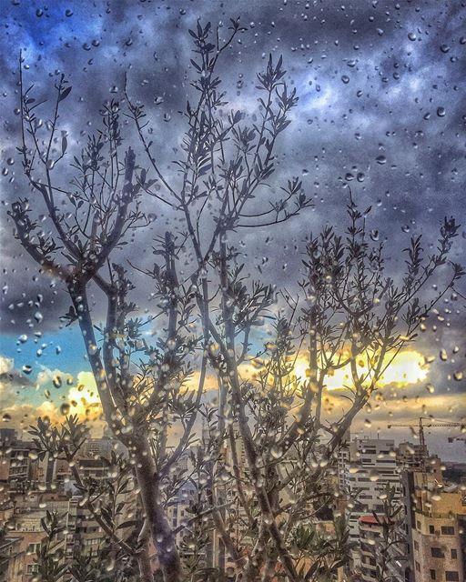 La clémence ne se commande pas. Elle tombe du ciel comme une pluie douce... (Beirut, Lebanon)