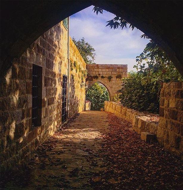 علّمني النور أنه يبذل ذاته ليجعل الأشياء مرئيّة.إنه رمزٌ شفّافٌ إليك. أنت... (Ehden, Lebanon)