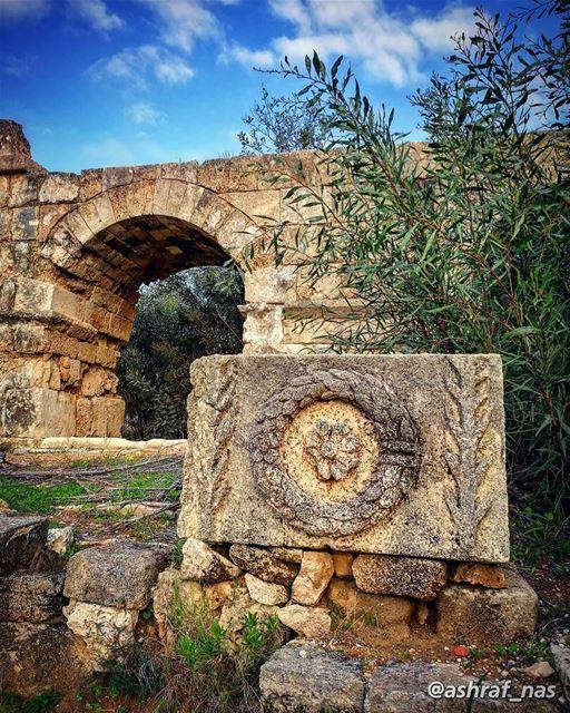 أنا على بابك قصيدةكتبتها الريح العنيدة...أنا حجرة أنا سوسنةأنا سوسنة يا... (Roman ruins in Tyre)