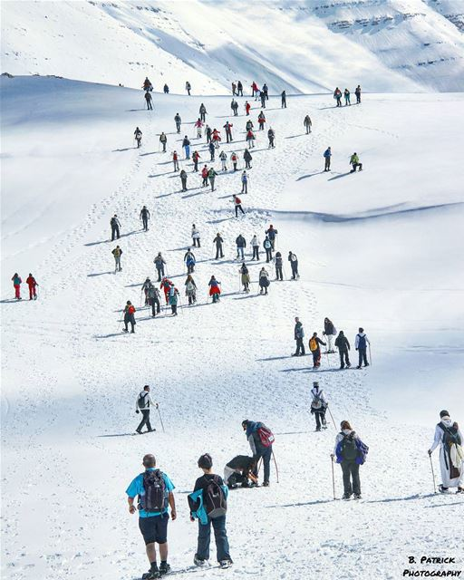 snowshoeing  LebanonGo out and leave your  footprints  everywhere!👣..... (Qanat Bakish, Mont-Liban, Lebanon)