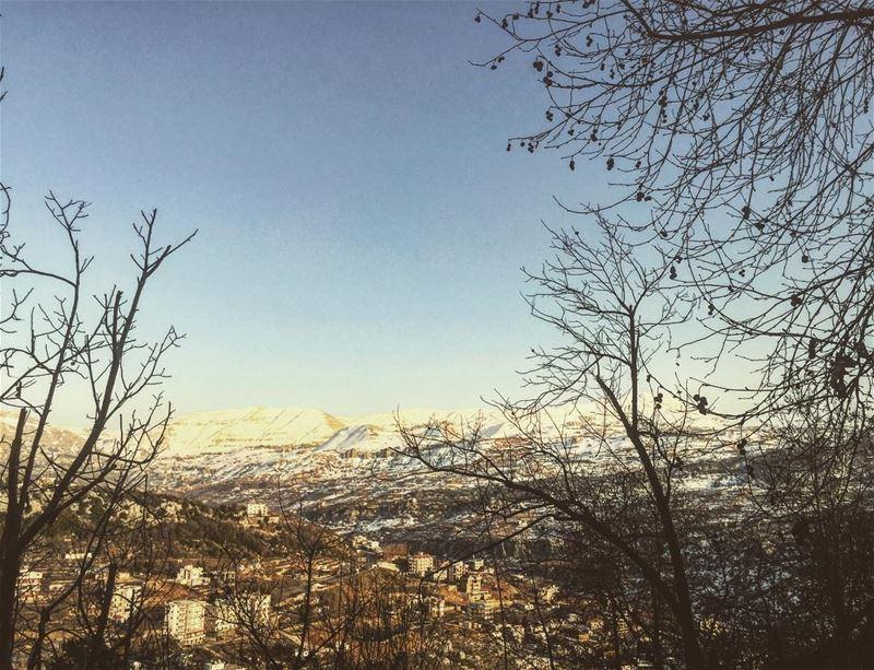 instame instalove lebanon mountain village afternoon snow tree sky blue...
