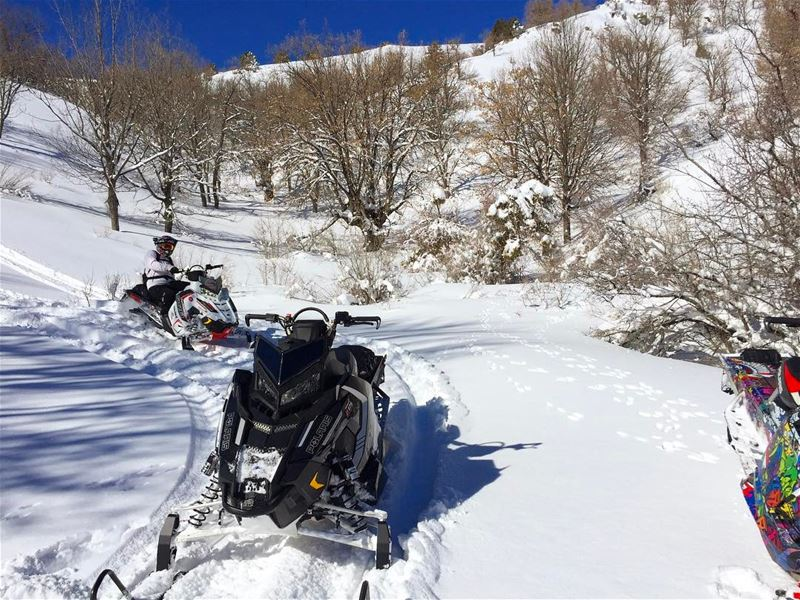 Live Love Lebanon !@livelovelebanon  polaris  fxr  polarisrider ...