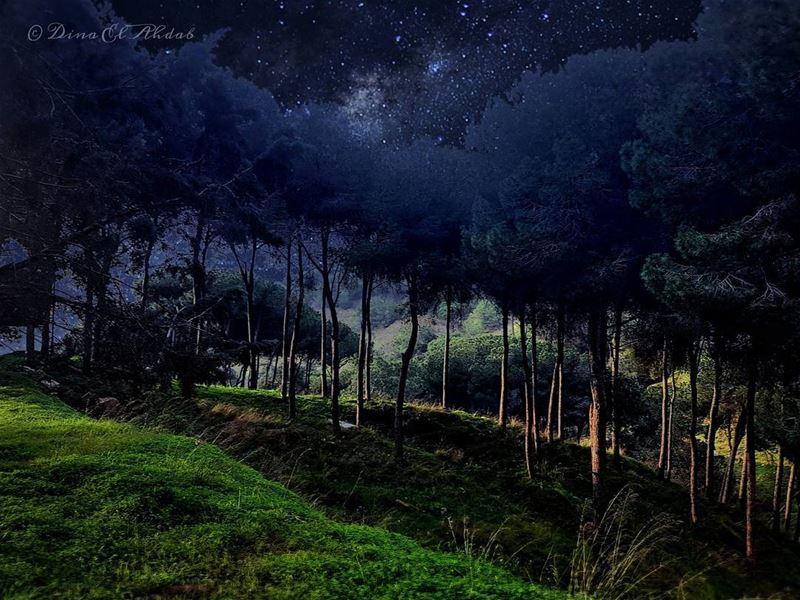 La nuit la plus sombre a toujours une fin lumineuse...____ 961lens ... (Mansourieh)