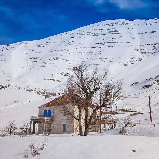 Never ending winter❄️.. lebanon skitouring instagood webstapick ... (Mount Sannine)