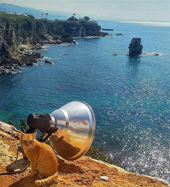Beautiful sunny day😊everyone is enjoying_Lebanon insta_Lebanon... (Mhanna Sur Mer)