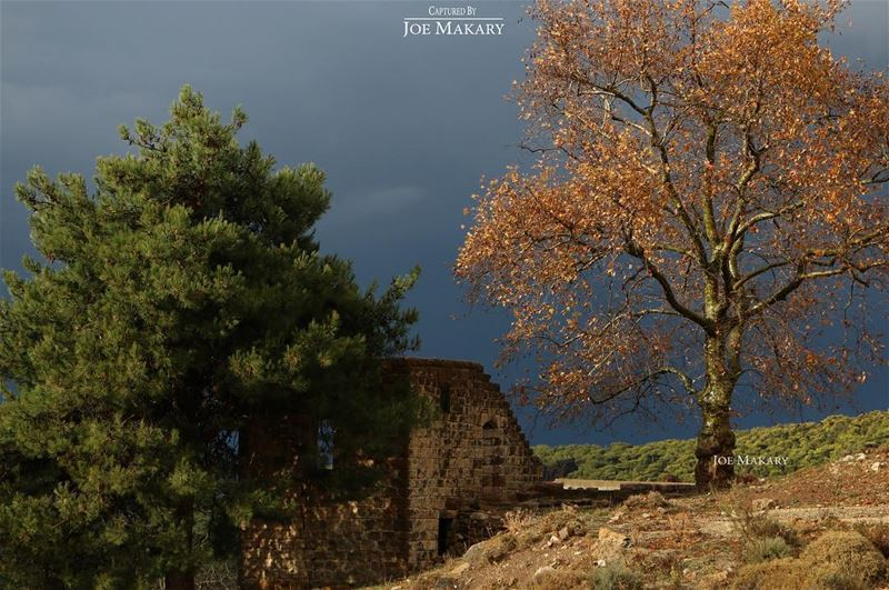 ehden oldhouse nature trees colors clouds thebestinlebanon ...