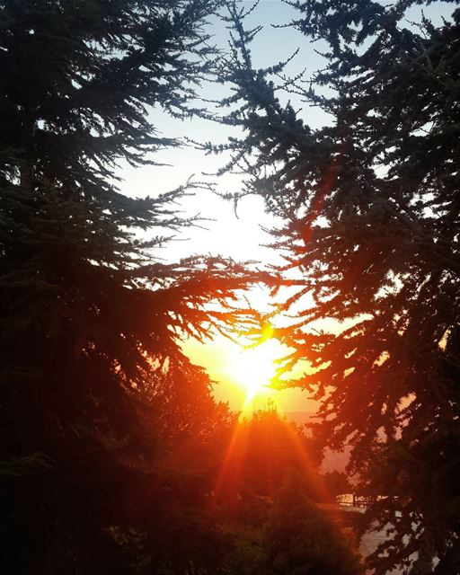 Can't get enough of the beauty of our nature lebanon sunset ...