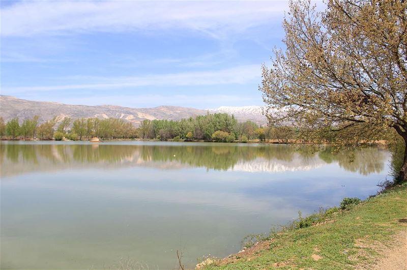 - Taanayel lake - lebanon livelovenature livelovelebanon ...
