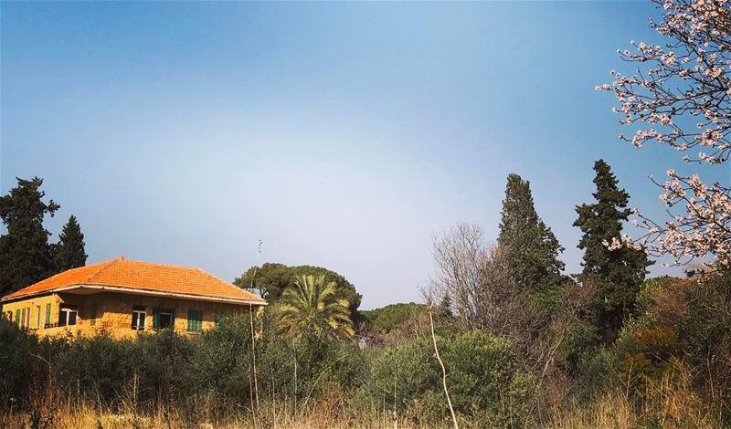 livelovelebanon livelovebeirut lebanonhouses greenery greenspot skies... (Hazmieh Mar Takla)
