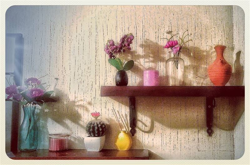 🌵 random  vase  flowers  colors  decoration  wall  shelves  wcpic ... (The Jerry Thomas Experience)