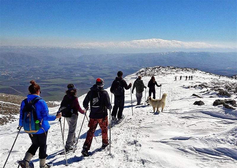 breath•tak•ing 🏔best View [ Barouk Mountain / Bekaa Valley / Mount... (Barouk Mountain)