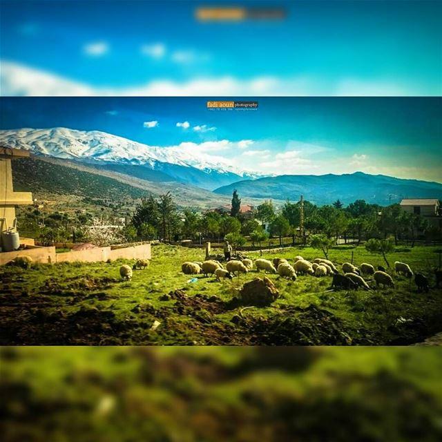 photo fadiaounphotography nature lebanon zahle photoshooting ...