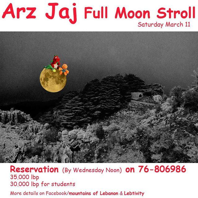 This Saturday Full Moon Stroll around the Cedars Grove at Jaj, Jbeil... (Jaj, Mont-Liban, Lebanon)