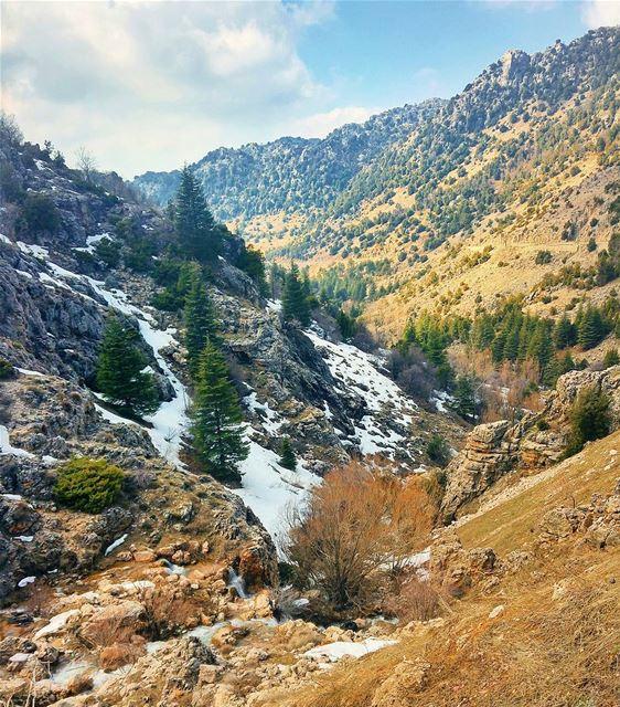 Beautiful Laqlouq 😍 lebanon nature naturelovers natureporn landscape... (El Laqloûq, Mont-Liban, Lebanon)
