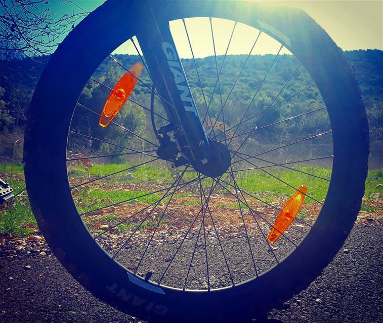 goodmorning  throughthetire kobayat  livelovebikes  biketire  giant ... (Kobayat)
