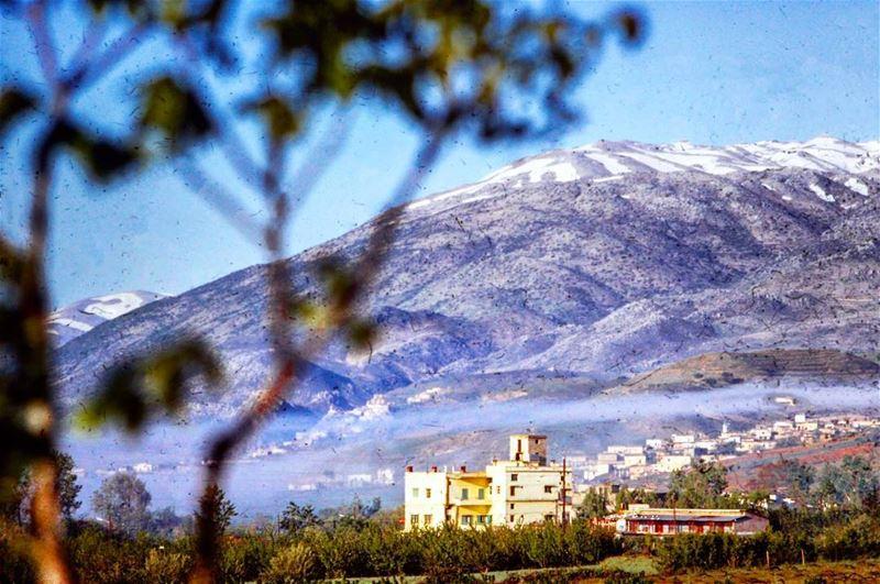 شتورة ١٩٦٠ ، Chtaura 1960 . Livelovelebanon Credits The Lebanese Heritage ©