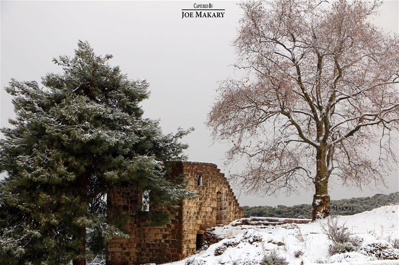 ehden oldhouse trees snow winter clouds beautifullebanon ...