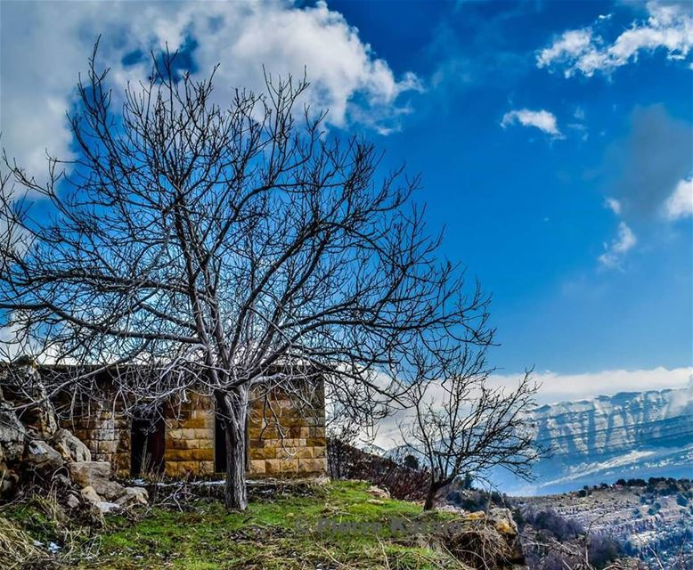 qartaba  old  house  traditional  tree  mountain  snow  clouds  bleu  sky...