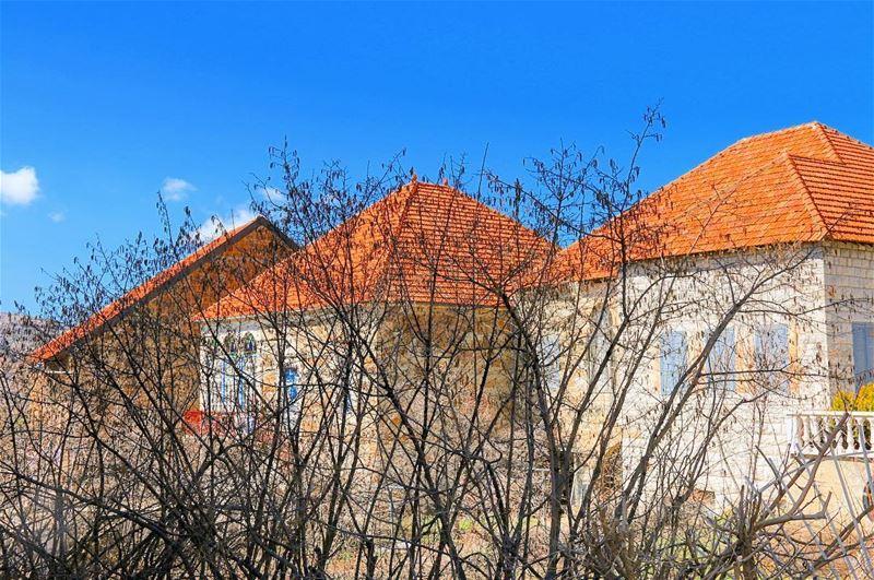 بيوت لبنان: مكعبات متوّجة بأهرامات 🏠Lebanese Homes are like cubes topped... (Hasroun)