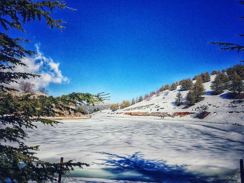 frozenlake 🏞 lake natureloversgallery naturephotography ptk_lebanon... (Shouf Biosphere Reserve)