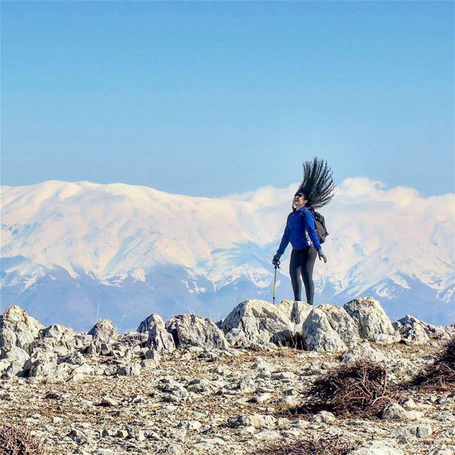 Freedom. wind peak hike snow winter outdoor sports nature ...