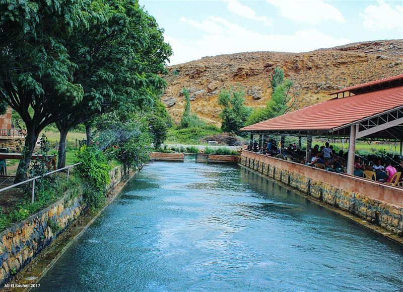 tb hermel assiriver river north bekaa lebanon summer trees ... (Hermel Assi River)