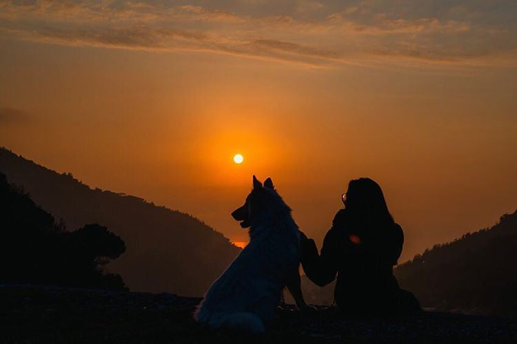 Sometimes the only thing you need is some quality time with your dog... (Aramoun - Kesrouan)