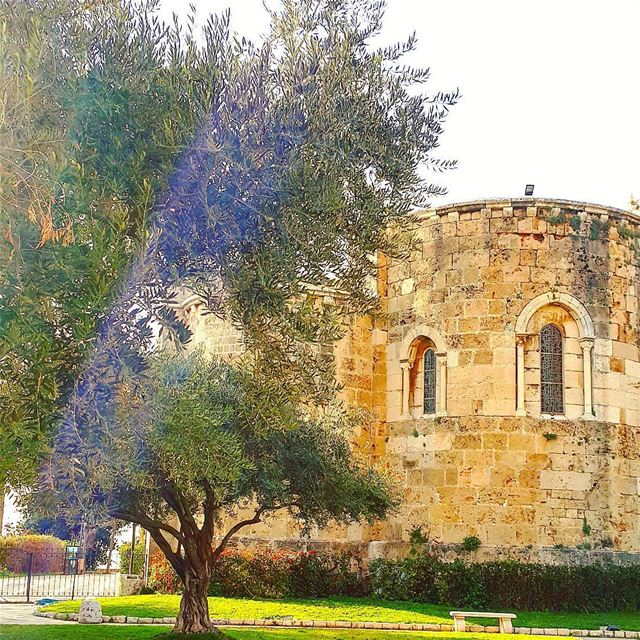 architecture lebanonarchitecture church tree archilovers wonderfulplaces... (Byblos - Jbeil)