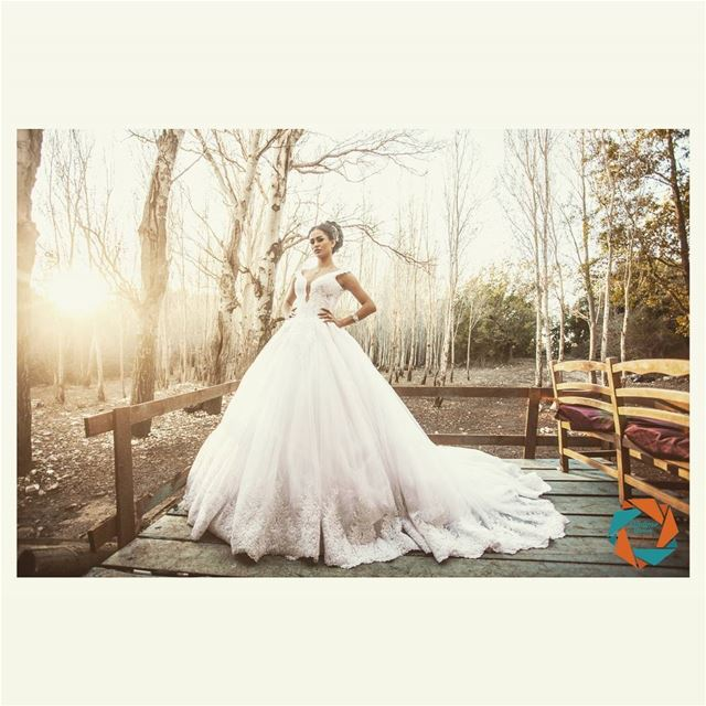 lifetimestorieslb photography eventplanning weddingdress bridedress ...