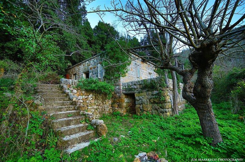 Abandoned and forgotten houses often hide the greatest stories!❤  oldhouse... (`Aramoun, Mont-Liban, Lebanon)