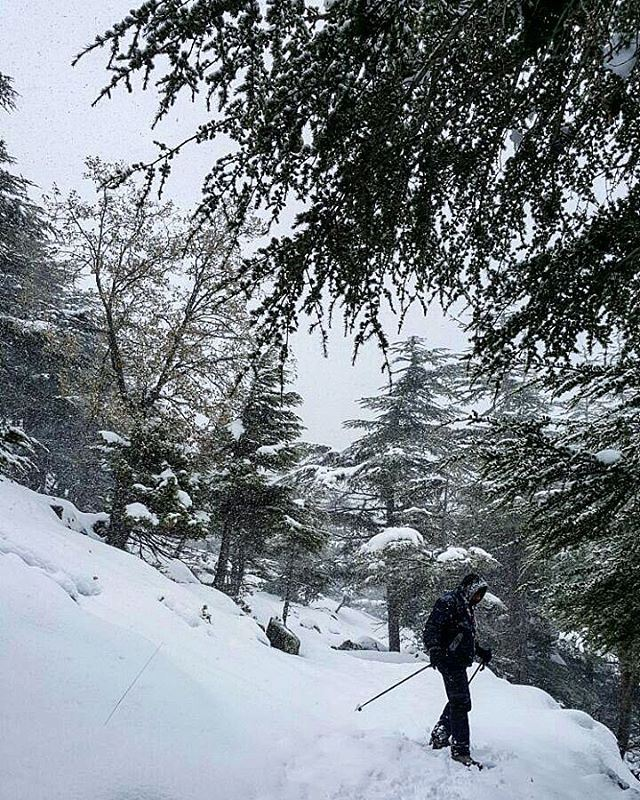 When the storm hits... we hit the mountains lebanon🇱🇧 PtRoy fitness ...
