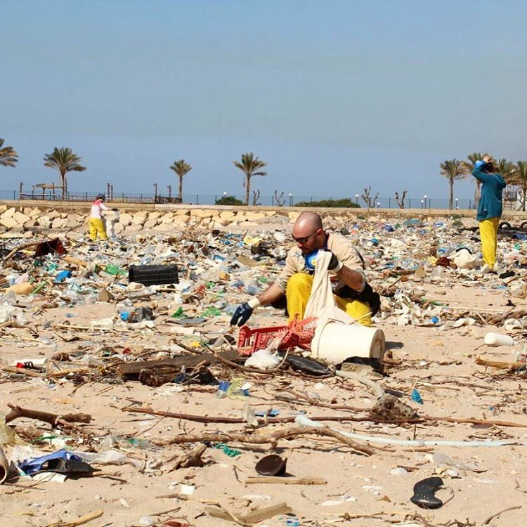 This is the destruction of the Mediterranean Sea ecosystem!! Makes you... (Residence de La Mer)