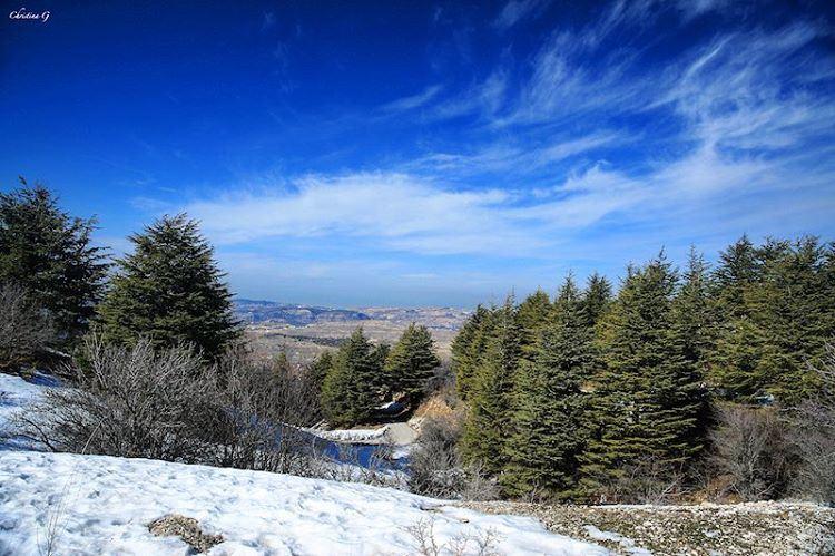 Last days of winter ❄️🌲 a7labaladbil3alam photo love photography ... (Arz el Bâroûk)