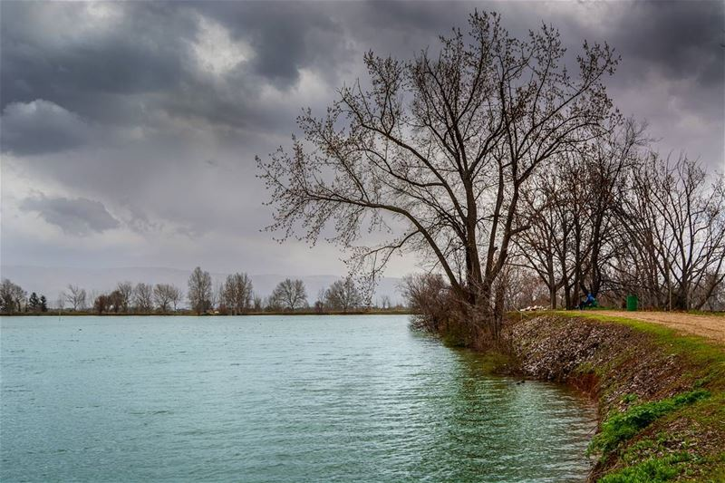 A stormy day | Taanayel, Bekaa LBTaken two days ago, the winter stills... (Taanayel Lake)