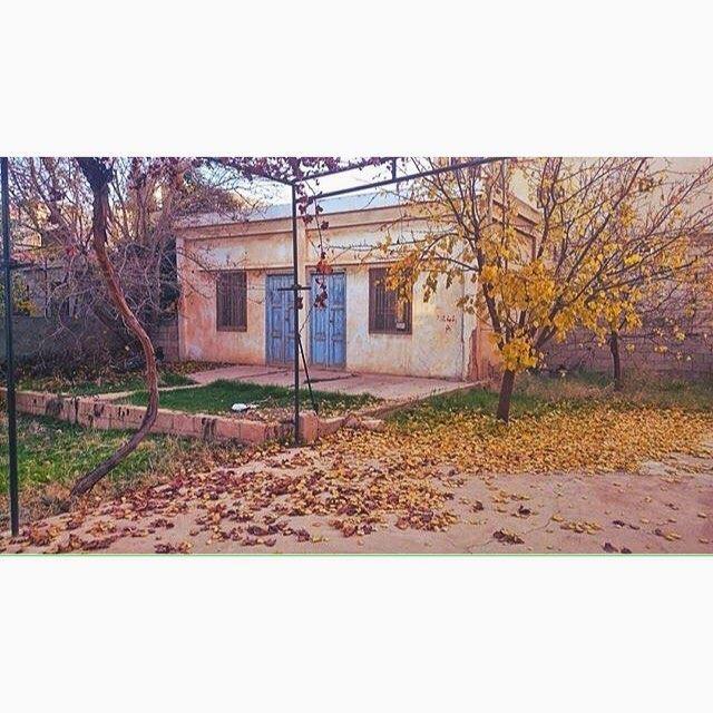 Village House - بيت الضيعة .