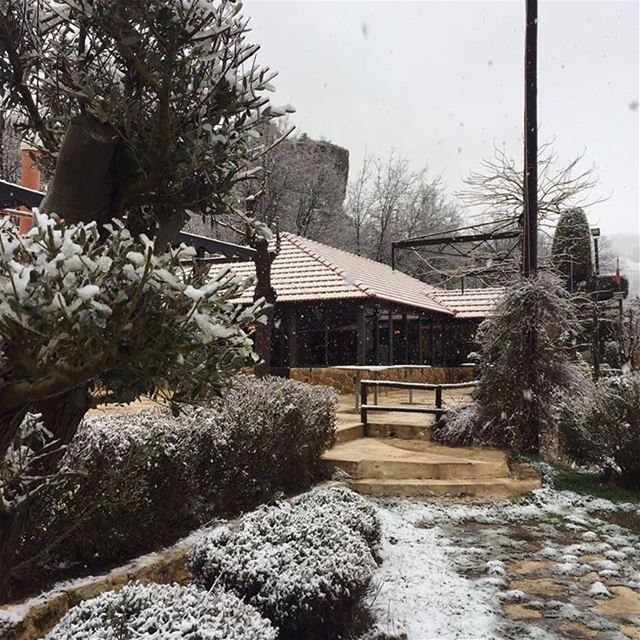 The snow is back ❄️ winter jalsat restaurant mayrouba faraya chimney...