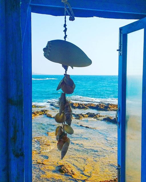 summer vibes blue window seashells potd instamood instacool ... (Chez Maguy)