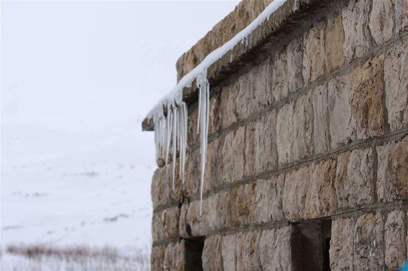 frozen winter2017 falougha snowday lebanon oldhouse livelovebeirut ... (Falougha, Mont-Liban, Lebanon)