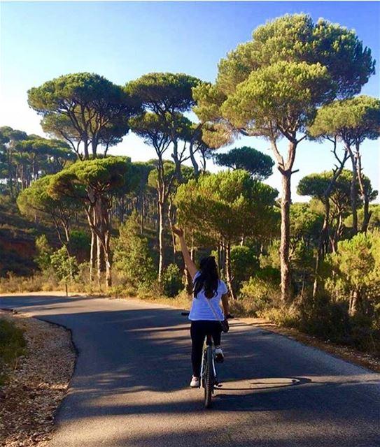 biking freestyle roadtrip nature naturelovers jezzine instamood ... (Jezzîne, Al Janub, Lebanon)